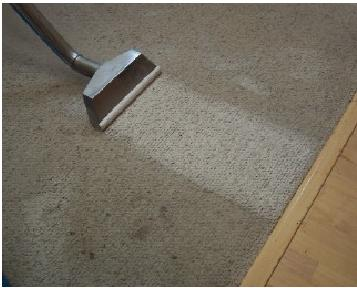 Brendas carpet.JPG