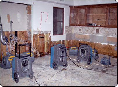 water damage company